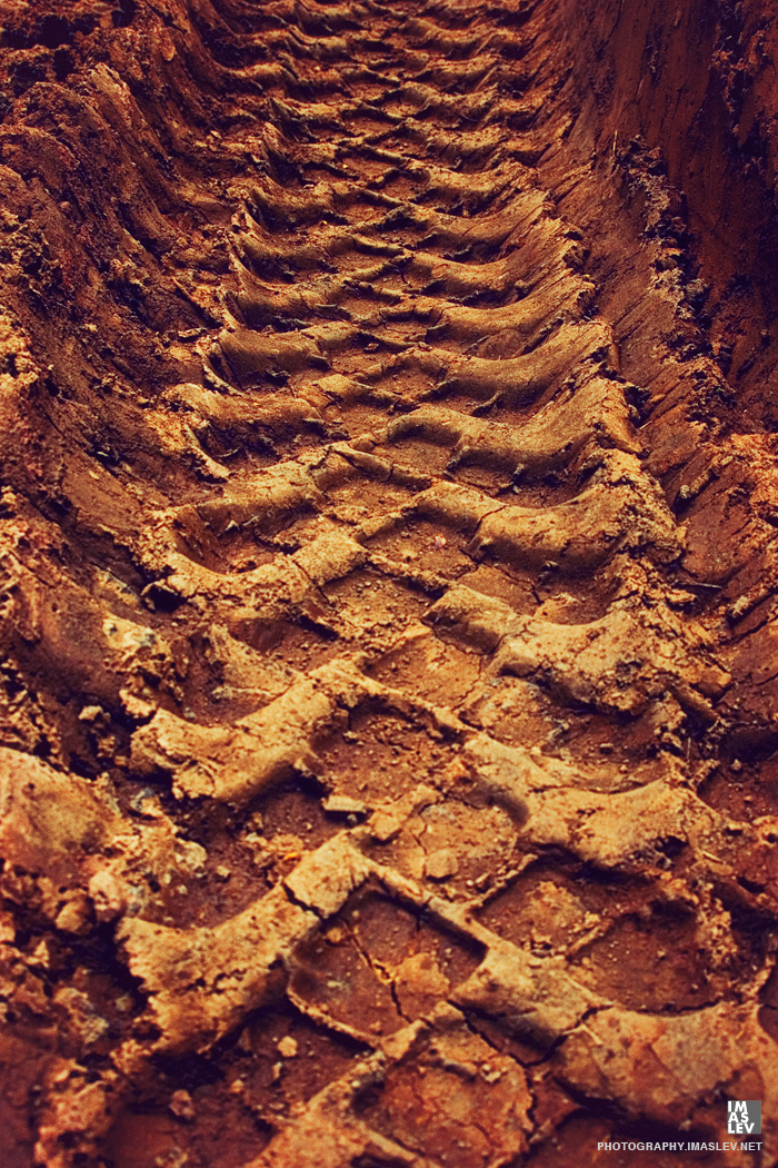 trail in the mud